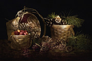 Still Life Photography Prints - A Gathering of Pine Print by Tom Mc Nemar