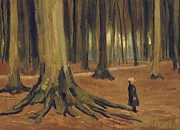 Tree Roots Posters - A Girl in a Wood Poster by Vincent van Gogh