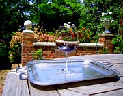 Merlot Photos - A Glass of Wine On A Silver Tray  by Don Struke