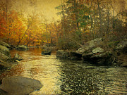 Mother Nature Photos - A Golden Autumn at the Unami by Mother Nature