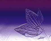 A Good Day For Purple Print by Barbara  White