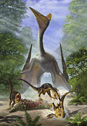 Forest Terror Prints - A Group Of Balaur Bondoc Dinosaurs Print by Sergey Krasovskiy