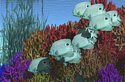 School Of Fish Digital Art - A Group Of Butterflyfish Swim by Corey Ford
