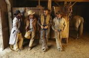 Informal Portraits Framed Prints - A Group Of Cowboys Model Released Framed Print by Phil Schermeister