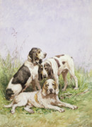 Portraits Of Pets Framed Prints - A Group of French Hounds Framed Print by Charles Oliver de Penne
