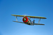 F3f Posters - A Grumman F3f Biplane In Flight Poster by Scott Germain