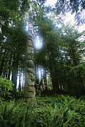 Woodland Scenes Posters - A Haida Totem Pole In Tongass National Poster by Rich Reid