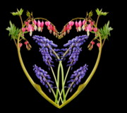 Flower Design Photo Prints - A Heart of Hearts Print by Michael Peychich