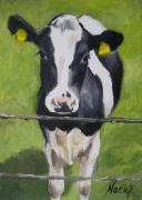 Noewi Metal Prints - A Heifer Metal Print by Jindra Noewi