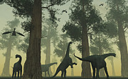 Roaming Posters - A Herd Of Camarasaurus Dinosaurs Poster by Mark Stevenson