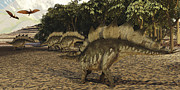 Pterosaur Framed Prints - A Herd Of Stegosaurus Walk Down A Muddy Framed Print by Corey Ford