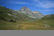 Dirt Roads Photos - A High Mountain Pasture In The Swiss by Taylor S. Kennedy