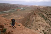 San Juan River Framed Prints - A Hiker Above The San Juan River Framed Print by Bill Hatcher