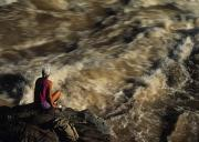 Colorado River Photos - A Hiker Scans Lava Rapids by Bill Hatcher