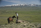 Ranchers Prints - A Horse And Rider On A Ranch Print by Phil Schermeister