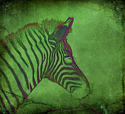 A Horse Of A Different Color Print by Judi Bagwell