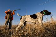 Model Released Photography Photos - A Hunter Aims At A Bird While by Joel Sartore