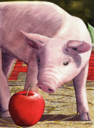 Pig Framed Prints - A is for Apple Framed Print by Catherine G McElroy