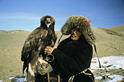 Falconry And Falconry Equipment Prints - A Kazakh Eagle Hunter Poses Print by Ed George