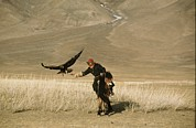 Falconry And Falconry Equipment Prints - A Kazakh Falconer Hunts His Golden Print by David Edwards