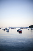 A Large Group Of Boats Float In A Maine Print by Hannele Lahti