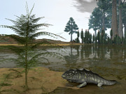 Paleozoology Art - A Late Devonian Ichthyostega Emerges by Walter Myers