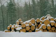 Winter Views Prints - A Layer Of Snow Covered A Stack Of Logs Print by Medford Taylor