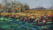Sonoma County Pastels Prints - A Little Chilled Vine Print by Debbie Harding