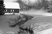 White River Prints - A Little Slice  black and white Print by Cathy  Beharriell