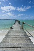Western Cape Prints - A Long Wooden Jetty At Churchhaven In The West Coast National Park Disappears Into The Turquoise Waters Of The Langebaan Lagoon, Churchhaven, Western Cape, South Africa Print by Neil Austen