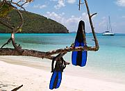 Ocean Views Prints - A Maho Bay Snorkel Print by Richard Mansfield