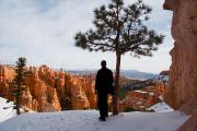 Southwest Us Framed Prints - A Man Looks Out At Bryce Canyon Framed Print by Taylor S. Kennedy