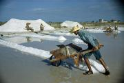 Puerto Rican Prints - A Man Pushes A Wheelbarrow Of Salt Print by Justin Locke