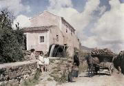 Horse And Cart Photo Metal Prints - A Man Transports Wood In Terceira Metal Print by Wilhelm Tobien