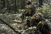 Ghillie Suits Prints - A Marine Sniper Team Wearing Camouflage Print by Stocktrek Images