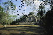 Ruins And Remains Prints - A Mayan Temple Ruin In Belize Print by Ed George