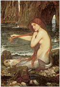 Red Hair Framed Prints - A Mermaid Framed Print by John William Waterhouse