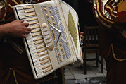 San Miguel Photos - A Mexican Musician Playing An Accordion by Gina Martin
