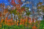 Autumn Art Prints - A Michigan Fall Print by Robert Pearson