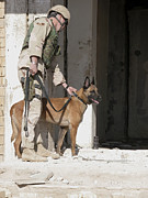 Working Dog Posters - A Military Working Dog And His Handler Poster by Stocktrek Images