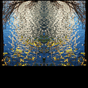 Austin Digital Art Posters - A Mirror Image of Sparkling Water Reflection Poster by Jennifer Holcombe