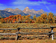 Park Scene Posters - A Moment In Wyoming In Autumn Poster by Jeff R Clow