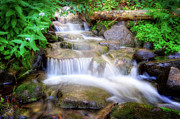 Stream Prints - A mountain stream pleases me more than the sea Print by Utah Images