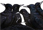 Black Bird Drawings Prints - A Murder of Crows Print by Don McMahon