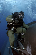 Navy Seals Photos - A Navy Seal Climbs Aboard A Seal by Stocktrek Images