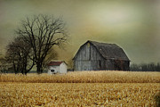 Shed Digital Art Metal Prints - A New Dawn Metal Print by Mary Timman