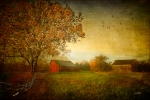 Barns Digital Art Prints - A New Dawn Print by Michael Petrizzo