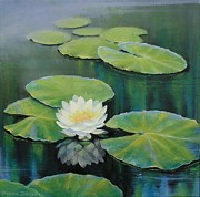 White Waterlily Paintings - A New Day  by Dorina Zieske