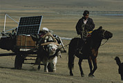 Solar Panels Etc. Art - A Nomadic Herder Pulls The Communitys by Gordon Wiltsie