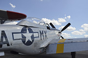 North American Aviation Photos - A North American F-51d Mustang by Stocktrek Images